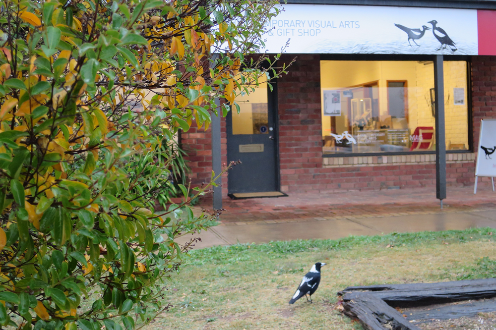 Mansfield Art Gallery, front view with magpie